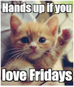 Hands up if you love Fridays Poster