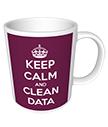 Keep Calm and Clean Data Mug